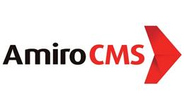 Создание интернет-магазина на Amiro CMS: особенности и цены